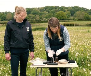 An equine practice in the New Forest is reporting great success using the ioLight portable microscope to diagnose intestinal parasites in horses at the stable yard.