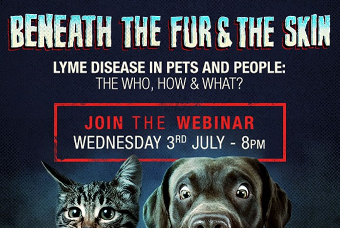 Zoetis is holding a free webinar to share the latest thinking about Lyme disease, on Wednesday 3rd July at 8:00pm.