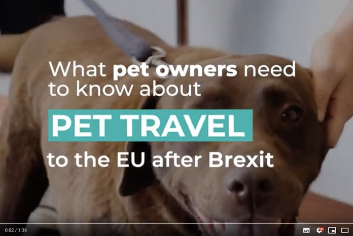 Defra has produced a video offering official advice for pet owners that want to travel with their pet in the event of a no deal Brexit.