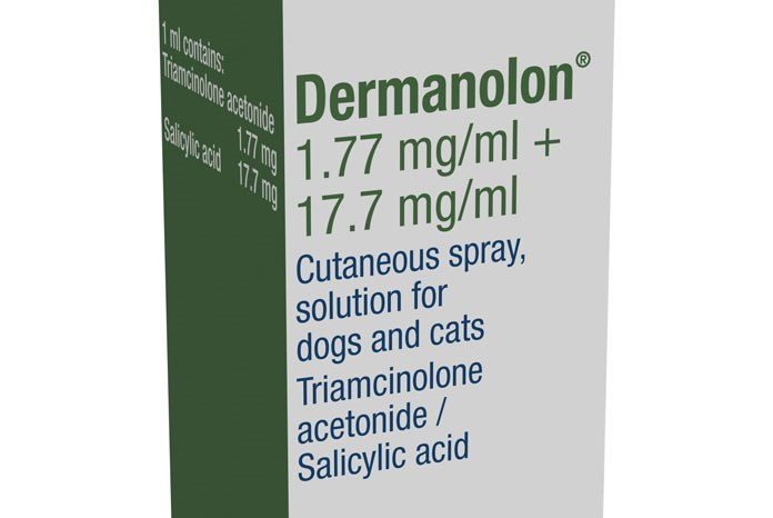 Dechra Veterinary Products has launched Dermanolon, a new symptomatic treatment to tackle seborrhoeic dermatitis in cats and dogs.