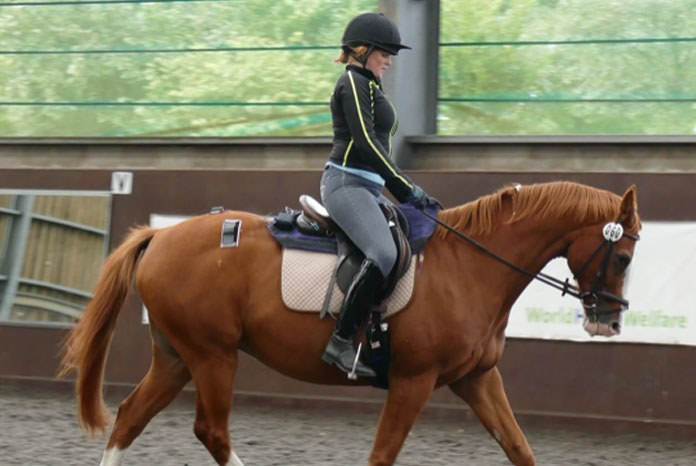 A new pilot study on the effects of rider weight on equine performance, presented at the National Equine Forum last week, has shown that high rider: horse bodyweight ratios can induce temporary lameness and discomfort.